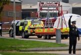 Bắt thêm 26 người liên quan vụ 39 thi thể người Việt tại Essex