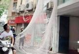Cảnh sát giăng lưới vây bắt bị can giết người trốn trên nóc nhà