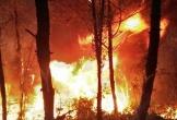 Cháy rừng Hà Tĩnh: Vì sao khó khống chế đám cháy