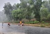 """Hà Tĩnh: Người dân hân hoan đón """"mưa vàng"""" giải nhiệt khốc liệt"""