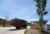 Hà Tĩnh: Công ty cổ phần gỗ MDF Thanh Thành Đạt có gây ô nhiễm môi trường?