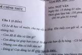 Đề thi Văn dành cho HSG lớp 9 gây tranh cãi khi xuất hiện câu Nghị luận xã hội khó hiểu