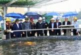 Vì sao dừng giám sát đặc biệt về bảo vệ môi trường với Formosa Hà Tĩnh?
