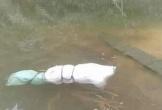 Bàng hoàng phát hiện thi thể người phụ nữ bị quấn chặt trong túi ni lông nổi lềnh bềnh dưới hồ
