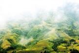 Sa Pa và những nơi có ruộng bậc thang đẹp nổi tiếng