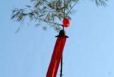 Nghệ An: Dựng cây nêu thuê, 3 người bị điện giật thương vong