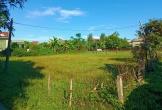 Nghi Xuân (Hà Tĩnh): Cần làm rõ việc chuyển đổi đất nông nghiệp thành đất ở để trục lợi!