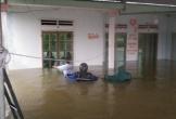 Ghi nhận lượng mưa kỷ lục, Quảng Ngãi di dời hàng nghìn người dân trong đêm