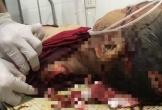 Hà Tĩnh: Điều tra vụ học sinh lớp 3 tử vong với nhiều vết thương trên cơ thể
