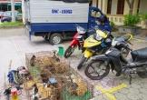 Hà Tĩnh: Sử dụng xe tải biển giả để... đi khắp nơi trộm mèo