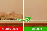 Vì sao nhà có mùi hôi, xử lý thế nào?