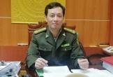 Chi cục kiểm lâm Hà Tĩnh nói về vụ hàng trăm héc ta rừng tự nhiên bị tàn phá