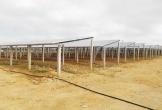 Hà Tĩnh có 485 hệ thống điện mặt trời mái nhà đấu nối, bán điện