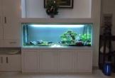 4 vị trí cấm kị đặt bể cá trong nhà nhiều người không biết