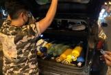 Tạm giữ 'thiếu gia' đi ô tô Peugeot tiền tỉ bán khí cười