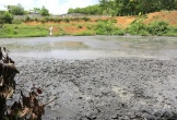 Xã Hà Linh, Hương Khê, Hà Tĩnh: Trại chăn nuôi lợn gây ô nhiễm môi trường